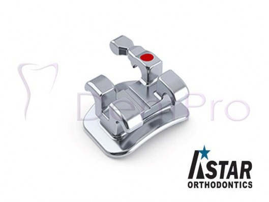 THINO BRACKET METALICO MINI...