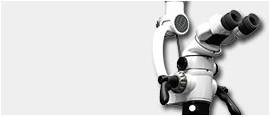 Microscopio electrónico dental